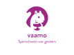 Logo vaamo–Applikation